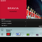 Sony BRAVIA HomeNet Website - Silver Winner
